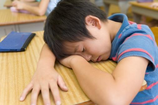 Boy sleeps at desk